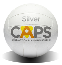 CAPS_Ball_Silver